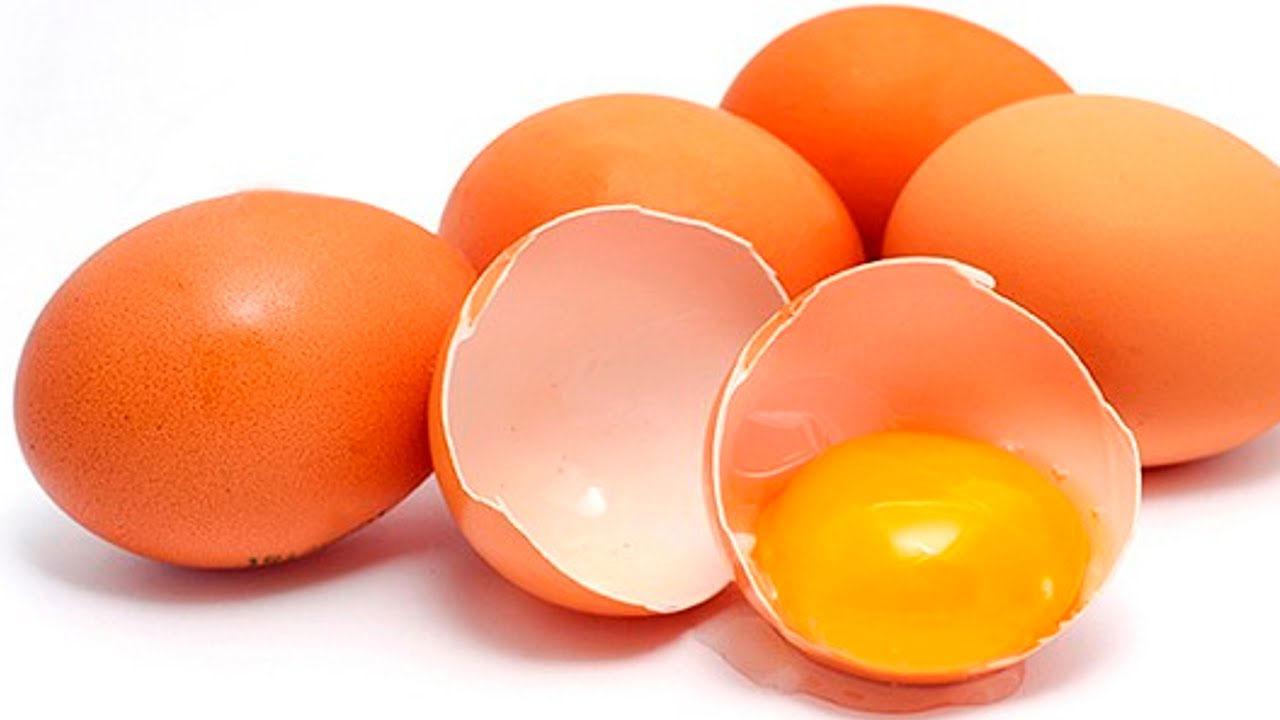 Posso dar ovo para meu bebê?
